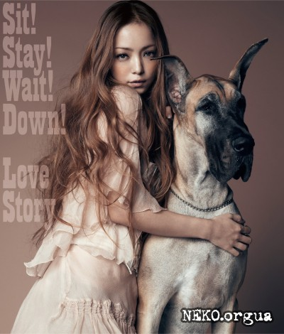 Namie Amuro - Sit! Stay! Wait! Down! / Love Story (2011)